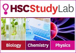 HSCStudyLab